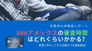 amex - ANAアメックス完全ガイド2020!ポイントを無期限に貯められて二重取り可能な優秀クレジットカード