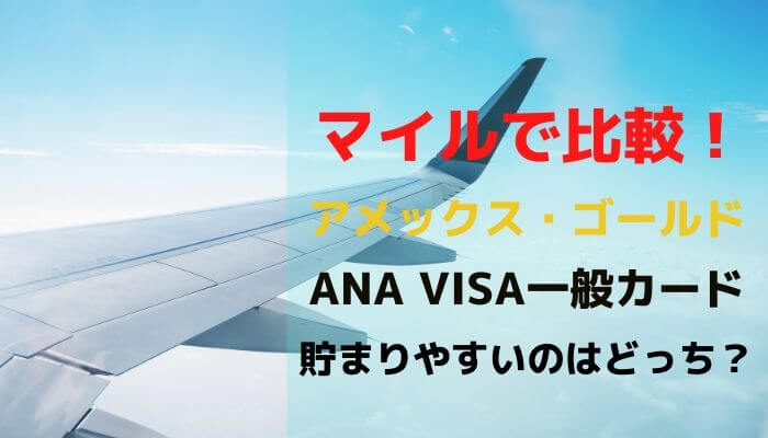 amex - ANAアメックスとANA VISA一般カードを超比較!選ぶならANAアメックス一択でした。