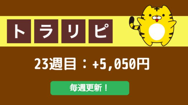 traprepertresult - 【トラリピ】23週目:運用実績は+5,050円でした!This is 不労所得