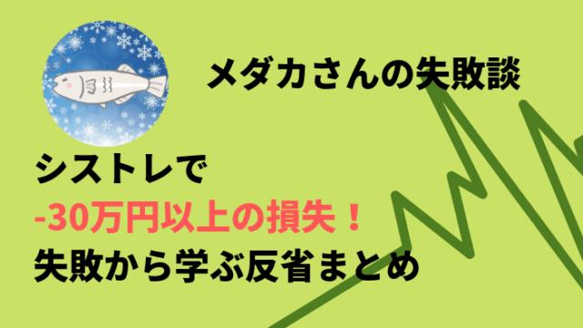 keiken - 【失敗談】シストレで-30万円以上の損失!失敗から学ぶ反省まとめ
