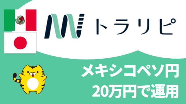 trarepe_set - 【トラリピ】メキシコペソ円(MXN/JPY)を20万円で運用!設定を徹底解説